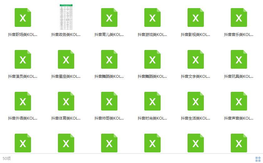 50份抖音各类目KOL前100名网红数据表目录