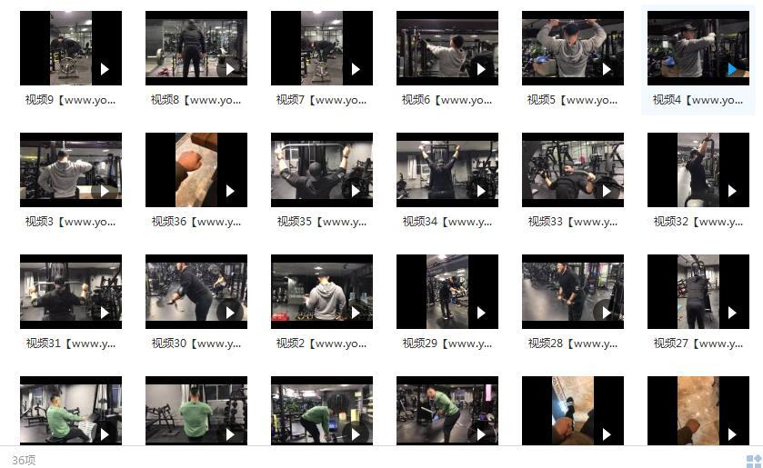 鹿神背部训练视频_健身视频教程_最全的背部训练方法目录