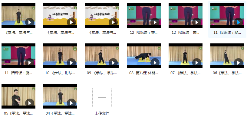 咏春拳入门教学视频课程内容目录