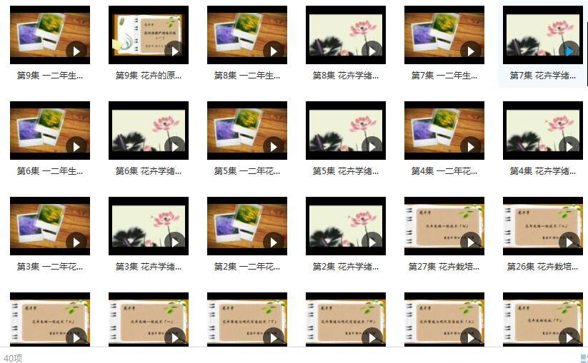 浙江大学 夏宜平 《花卉学》1.59GB 在线教学视频I+II合集