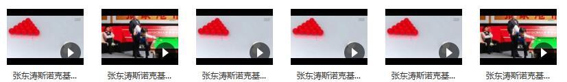张东涛斯诺克入门基础教学视频目录